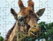 Giraffe Jigsaw