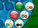 Bacteroid