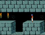 Prince of Persia Special Edition