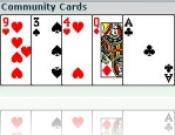 Texas Hold'em Multiplayer Poker